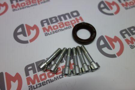 Gasket kit flange DW10TD VDO X39-800-300-001Z